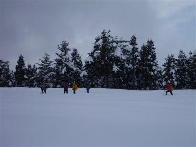 2012-02-12-057.jpg