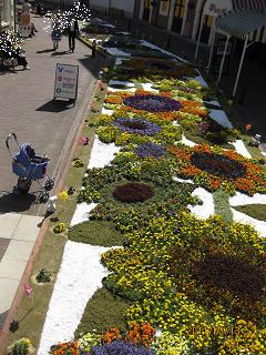 花のカーペット