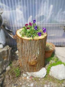 間伐材の植木鉢