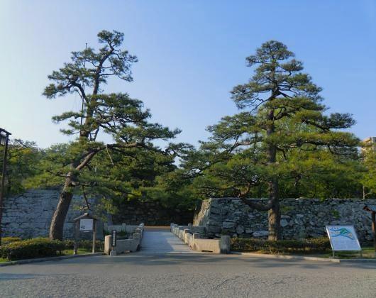 徳島城正面(二本松)