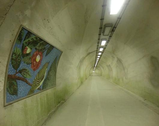 宇和島郊外トンネル②