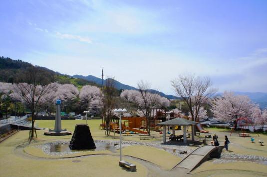 桜 歌舞伎文化公園 全体