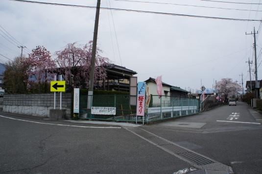 桜 徳島せぎ 入口