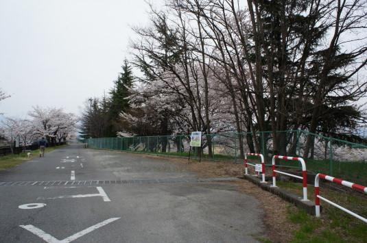 桜 徳島せぎ 駐車場