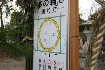IMG_6055sugi1003.jpg