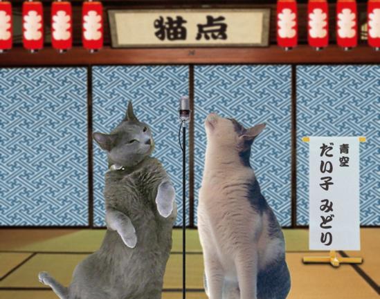 猫点漫才2