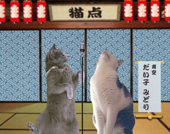 猫点漫才3