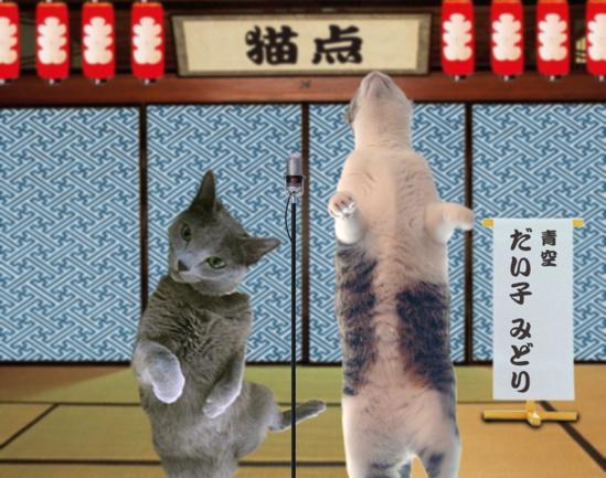 猫点漫才4