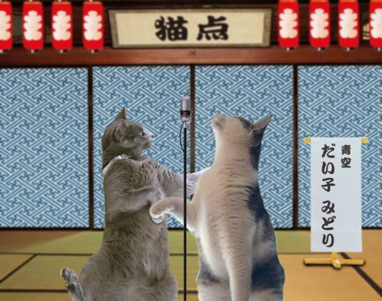 猫点漫才5