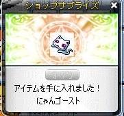 Maple110930_005131.jpg