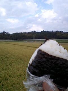 inekari2011