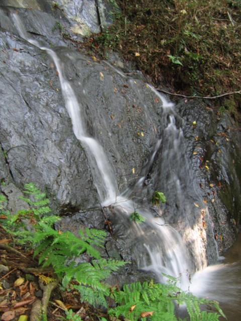 鳴滝2007110303