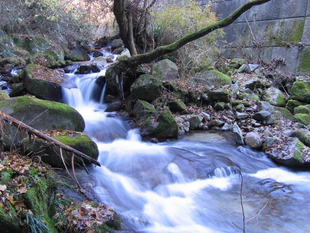 関根川の小滝2007120701