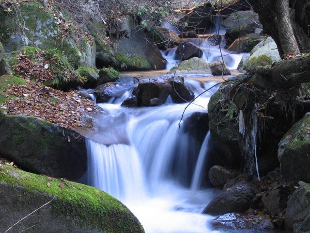 関根川の小滝2007120702