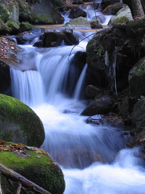関根川の小滝2007120703