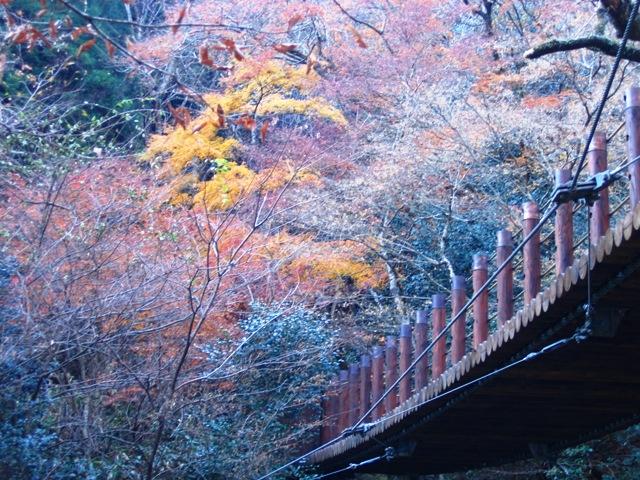 汐見の滝2007120702