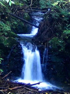 淋濃落の滝20051100702