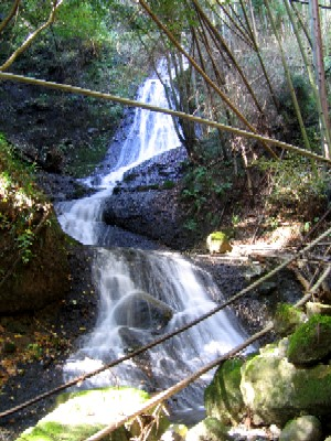 高田の滝20051100702