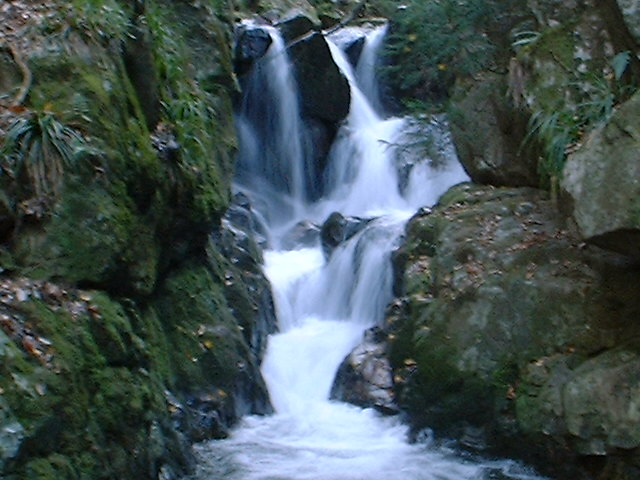 河鹿沢の滝2004120402