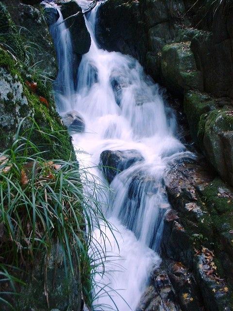 河鹿沢の滝2004120405