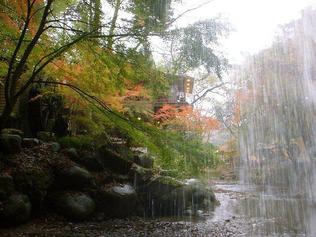月待ちの滝2004111803