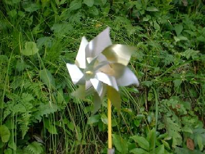 風車2005003