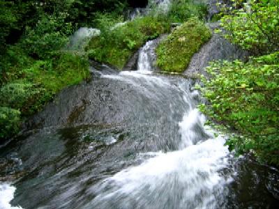 竜頭の滝20050822003