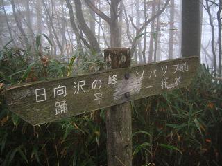 arima-kouyou229