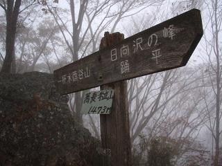 arima-kouyou233