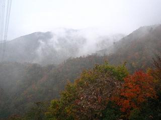 arima-kouyou242