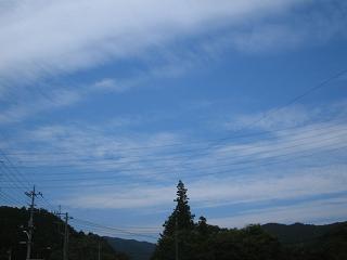 arima-kouyou248