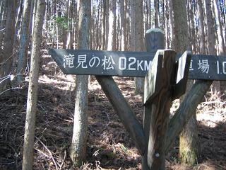gozyou207
