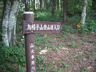 haruna235