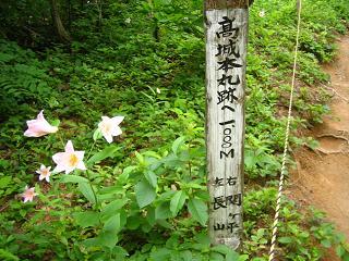 himesayuri241