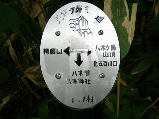 himesayuri266