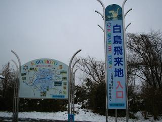kawamoto-hakuchou202