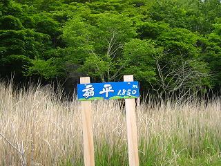 kentokuyama274