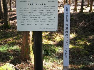 kiurahara201