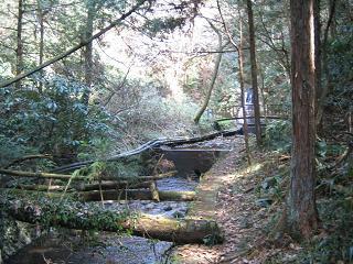 kouyama203
