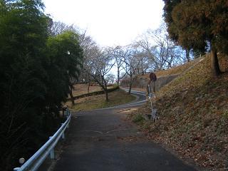mikamoyama220