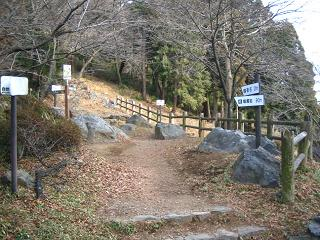 mikamoyama221
