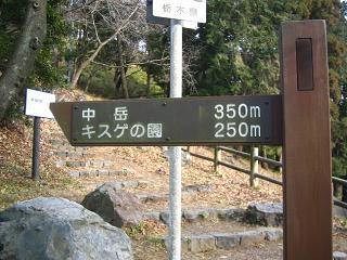 mikamoyama222