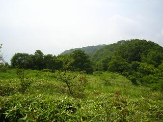 minamidaibosatu237