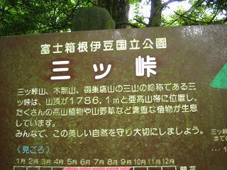 mitutougeyama205
