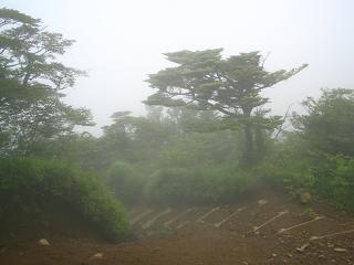mitutougeyama229