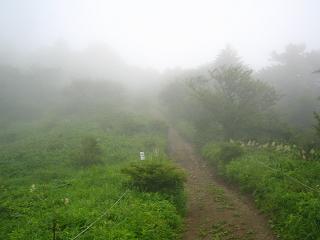 mitutougeyama235