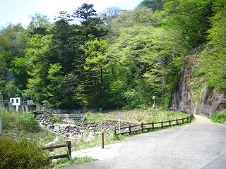 naonisawa203