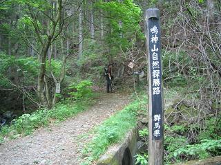 narukamiyama205