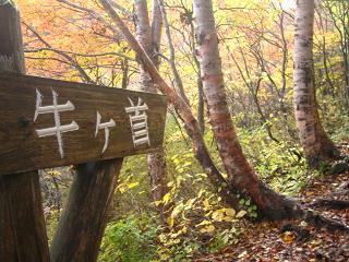 nasu-kouyou231
