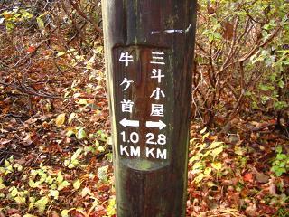nasu-kouyou233